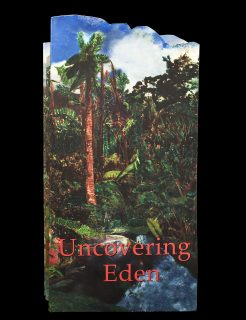 Uncovering Eden cover