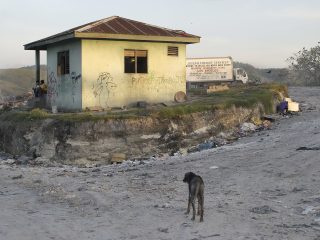 A scruffy dog mopes in a street lined with litter before a shant hut