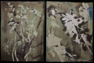 Vandyke brown print and cyanotype diptych of of leaves, flowers, vine, on mostly shades of brown background
