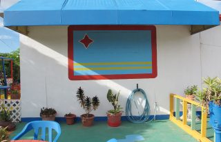 """color photo of potted plants, hose, blue awning, wall painting, cement floor of outdoor """"yard"""", Aruba"""